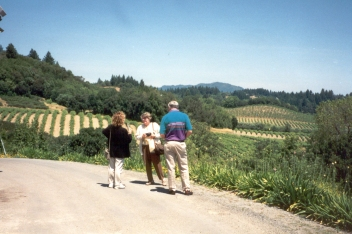 winery view 1